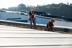 Absturzsicherung auf dem Dach